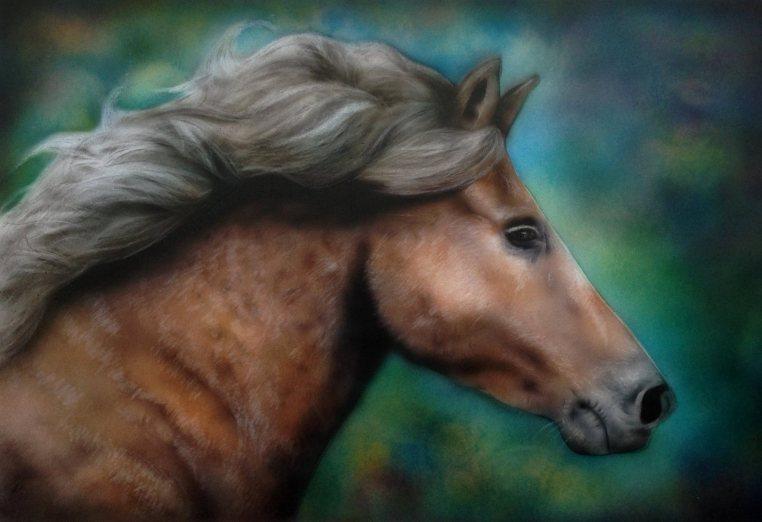hevonen1